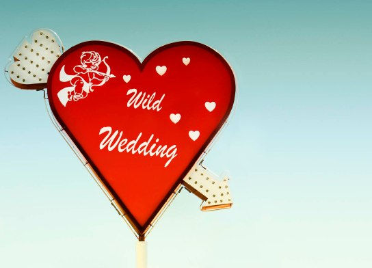 Wildwedding3